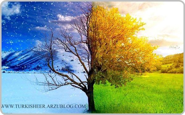 http://turkisheer.arzublog.com/uploads/turkisheer/gish-yay.jpg